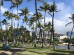 ハワイで働くことの5つの魅力。ハワイで働く日本人が現地から紹介