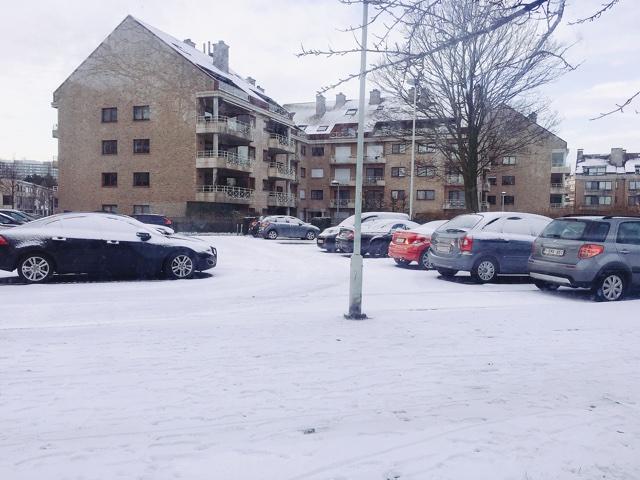 アントワープの冬