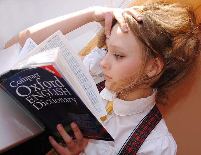 辞書を読む