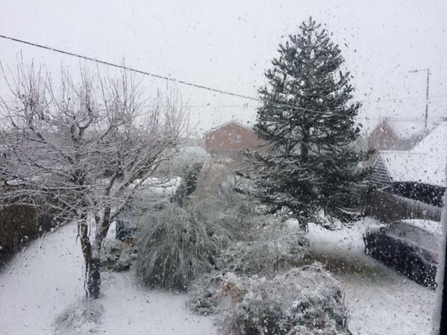 チェルムスフォードの冬