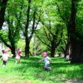 海外で小学校教諭、幼稚園教諭として働くための方法
