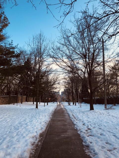 冬のカナダ